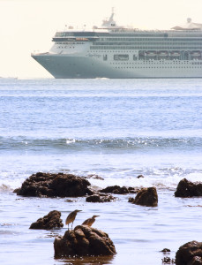Cruise Ship On A Cruise Near The Seashore